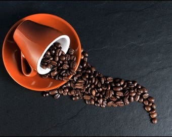 Coffee Samplers, Premium Kentucky Roasters, Whole Bean Coffee, Fresh Roasted, Organic, 4 Coffee Roasts, Coffee Lovers Gifts
