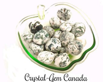 3 (three) beautiful Tree Agate, Pocket Stones, - Gemstone for success and prosperity. Gemstone infused w Reiki