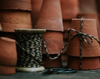 Terracotta pots with twine - Fine Art Print