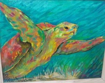 Sea Turtle, Underwater,Sea,
