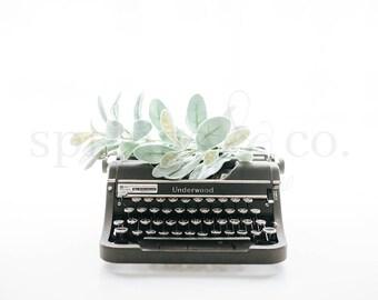 Typewriter Styled Stock Photography Eucalyptus Styled Stock Photo Social Media Styled Stock Photo Business Styled Stock Photo Mockup - 0007