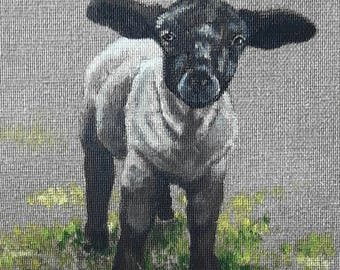 SHEEP.01. 20X20cm