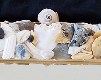 "Seashell encrusted wall mirror, 12"" x 14"", Home decoration"