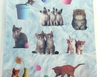 STICKERS for computer * cats * plank: 12.5 cm x 7,5 cm EAN 3045677574475