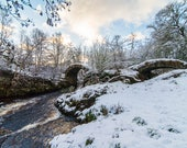Packhorse Bridge Blank Gr...