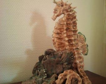 Wonder of the sea: the Seahorse or the Sea Dragon.