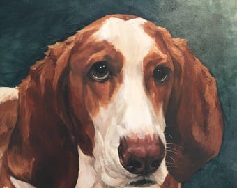 "Custom Pet Portraits in oil, 20""x 20"", August SALE!"