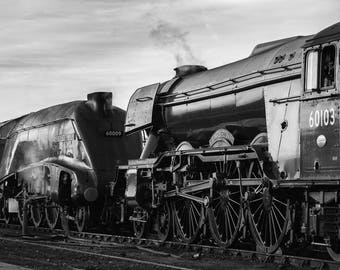 Union of South Africa and Flying Scotsman A3 Print