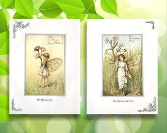 Stitchwort and Daisy Flower Fairy Print from vintage book. Woodland Fairies Nursery themed gift for girl. Illustration for framing