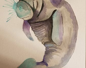Manatee watercolor