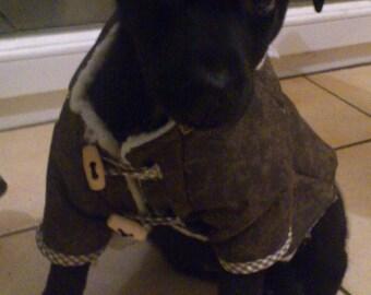 Manteau pour chien de taille moyenne