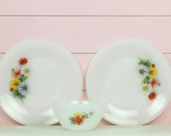 Arcopal France anemones Plates, set of two (2)