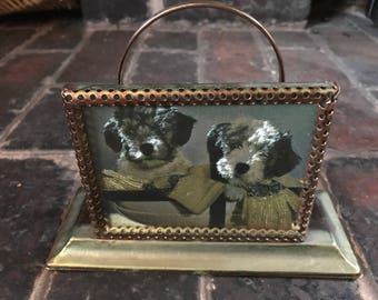 Vintage 1970s Letter Rack with picture of dogs