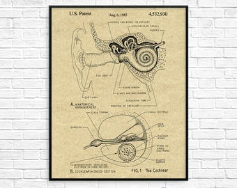 Cochlear Implant Patent, Inner Ear Diagram, Ear Anatomy Poster, Audiologist Art, Ear Wall Art, ENT Doctor Gift, Hearing Aid Decor