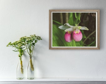 Flower Photography, Pair of Lady Slippers, Digital Download, Printable Wall Art, Home Decor, Wall Decor, Flower Decor, Nature Lover's Gift