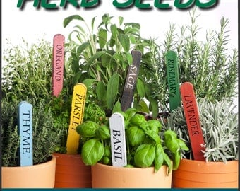 Mediterranean Herb Seeds Basil, Lavender, Oregano, Parsley, Rosemary, Sage, Thyme FREE SHIPPING