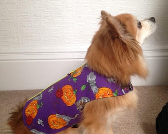 Halloween pumpkins and kittens small dog coat