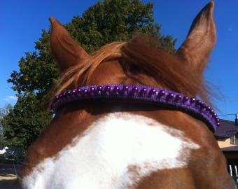 "Great browband ( bridle) ""Lilac miracle"" for your favorite horse"