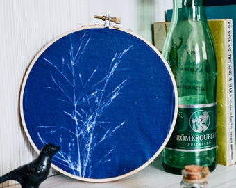 "Embroidery Hoop Wall Hanging | Cyanotype | Sun Print | Handmade | Wall Hanging | 6"" Wild Grass Botanical Blueprint"