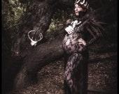 Raccoon Jawbone and Leather Crown