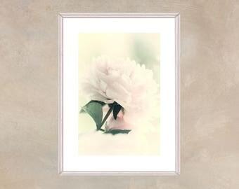 Printable Peony Art,  Pink Peony Photograph, Large Flower Art, Peony Fine Art Print, Pink Bedroom Wall Decor