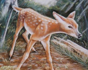 First Steps- Newborn Fawn Print of Original Pastel Painting
