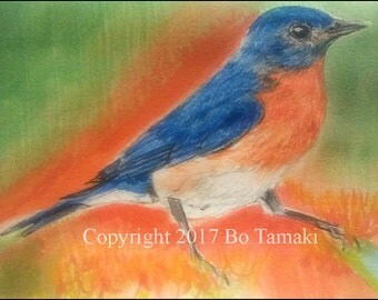 Bluebird of Happiness 5X7 greeting card