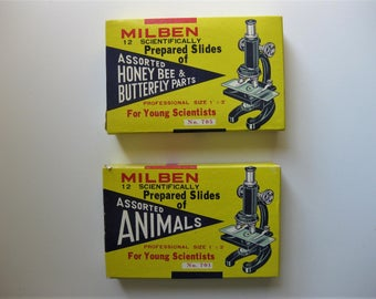 Vintage Glass Slides with Specimens, Boxed Sets, Milben Scientifically Prepared Slides, Honey Bee, Butterfly and Animals