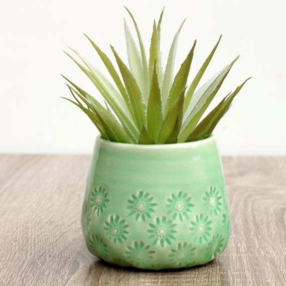 green succulent container