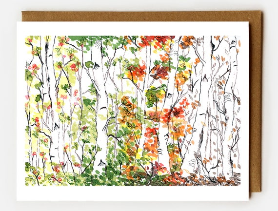 Birch Trees Cards, Boxed Set of 6, Blank Cards, Woodland, Boxed Cards, Four Seasons, Notecards, Nature Cards, Birch Forest, Nature Lover
