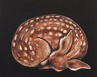 Sleeping Fawn - Fine Art Print of Original Painting