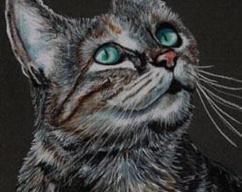 Tabby Cat Looking Up Art Note Card