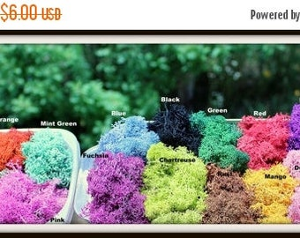 Save25% Reindeer moss-Preserved lichens-2 oz bag in your color choice-Deer foot Moss-Black-Mango-Light blue and more 2 Oz. Bag Prese...