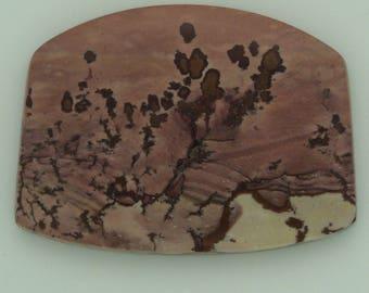 Owyhee Mountain Dendritic PIcture Jasper from Eastern Oregon