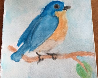 Bluebird of Happiness #1