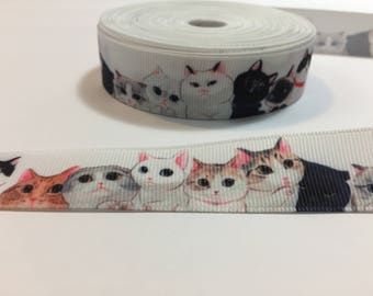 3 Yards of Ribbon - Adorable KItens or Cats 7/8 inch Wide