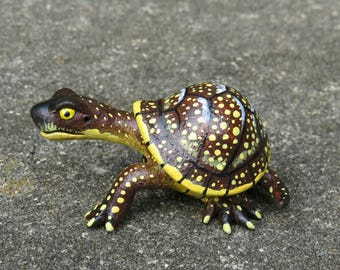 Miniature Gourd Turtle - Brown speckled Blanding's Turtle