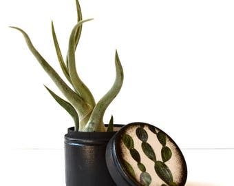 Cactus  Large Wood Box / Succulent  / Powder Box / Storage Box / Jewelry Box / Coin Box / Wooden Boxes / Trend / Wood Boxes / Handmade