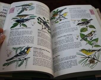 Vintage Reader's Digest North American Wildlife