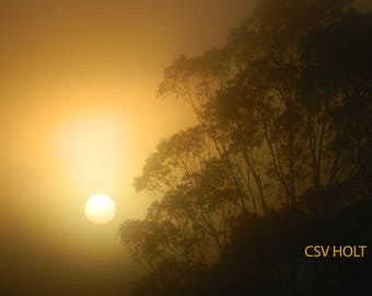 "Original Photography ""Eerie & Mystical Sunrise"""