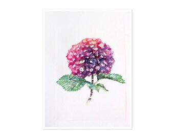 Floral Art Print - Hydrangea Watercolor Print - Modern Wall Art