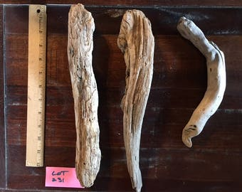 "Bundle of three (3) unique driftwood pieces, between 10-14"", from the Oregon Coast"