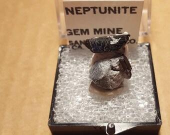 Beautiful Neptunite specimen
