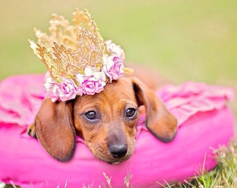 PET gold Sienna crown with pink roses || photography prop