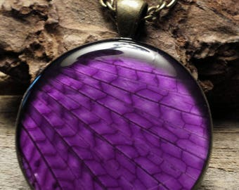 PhbeaD- Large Round Pendant with REAL GRASSHOPPER WINGS: entomology jewelry, real insect jewelry, real wing jewelry, real butterfly wings