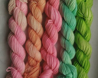 Mini skeins/ set of 5 sock mini skeins/ Hand dyed yarn