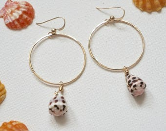 Gold Filled Mini Hebrew Cone Shell Hoop Earrings