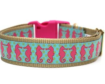 """Summer Dog Collar 1.5"""" Large Dog Collar Seahorse Dog Collar"""