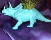 Colorful Dinosaur Planters for succulent or Air plants  DISCOUNT PRICE SAVED for Somsers