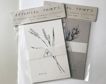 Mystery Botanical Print Pack of 5